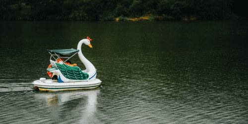 Swan Boat on Lake Gregory Things to do in Nuwara Eliya, Sri Lanka