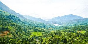 Adam's Peak Things to do in Nuwara Eliya, Sri Lanka