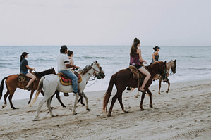 Horseback riding on Gili Trawangan